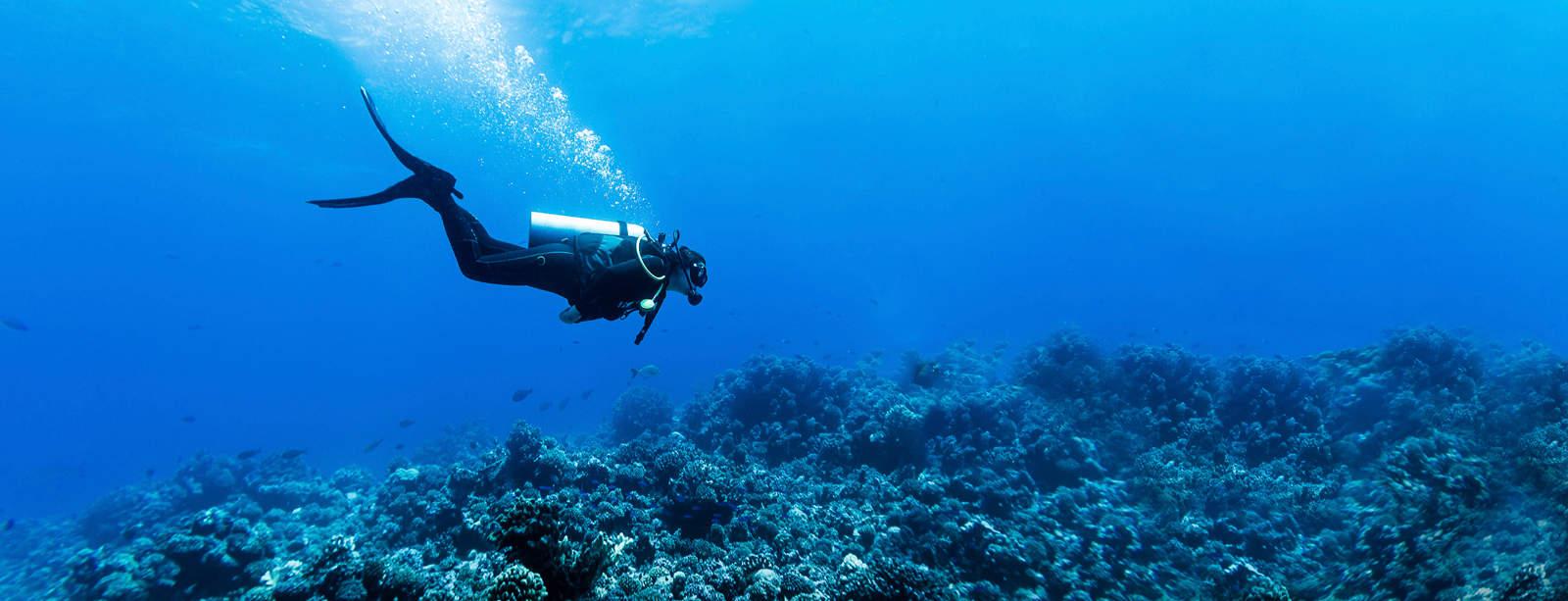 Diver-v1