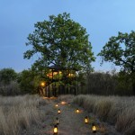 copy-of-pench-tree-lodge-evening
